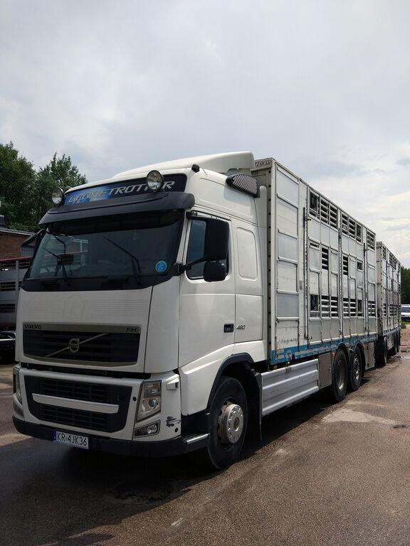 nákladné auto na prepravu zvierat VOLVO FH460 XL,3 stock,Pezzaioli,T2,Service + príves na prepravu zvierat
